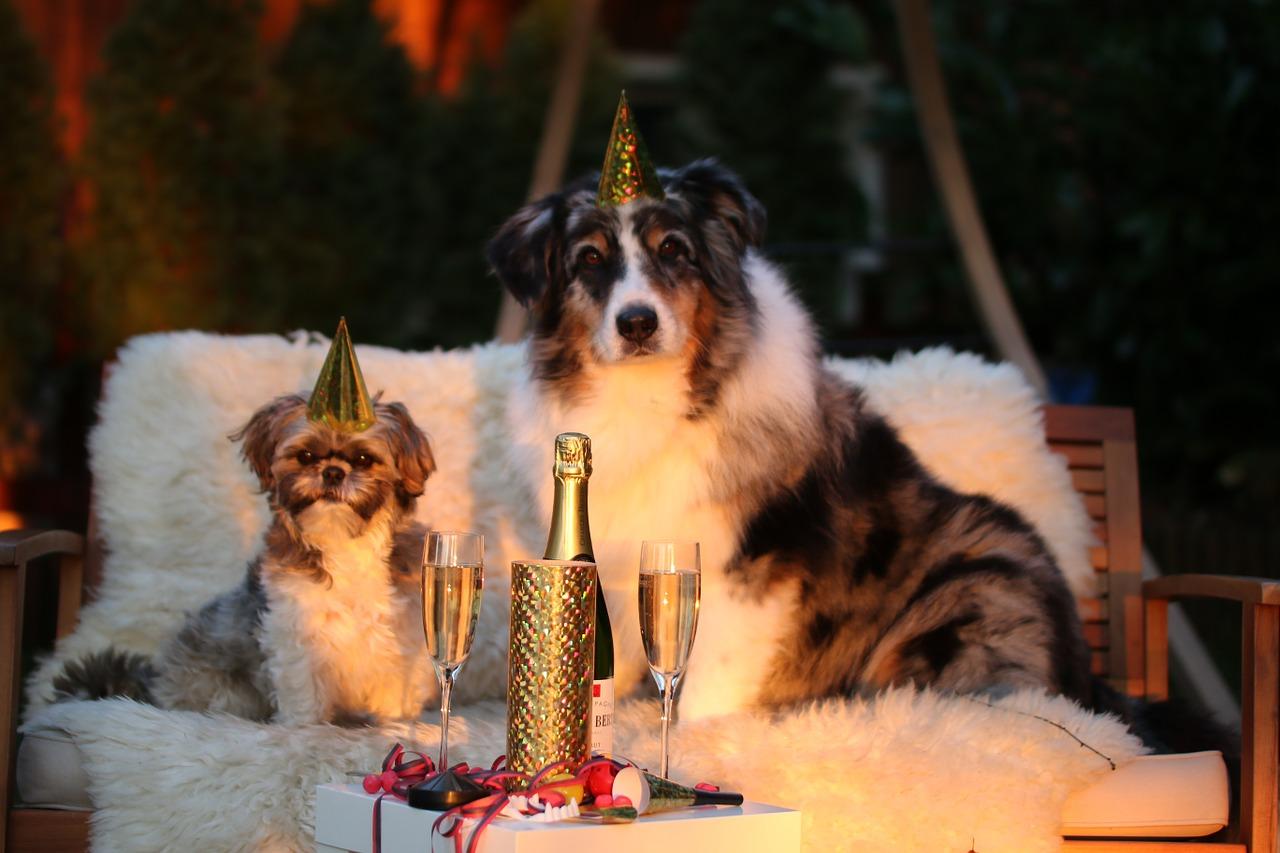 New Year's Parties? Trust Tipton Linen
